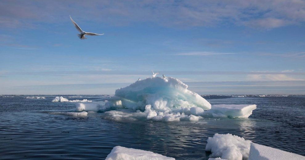'A Climate Emergency Unfolding Before Our Eyes.' Arctic Sea Ice Has Shrunk to Almost Historic Levels