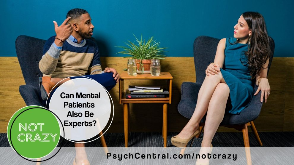 Can Mental Patients Also Be Experts?