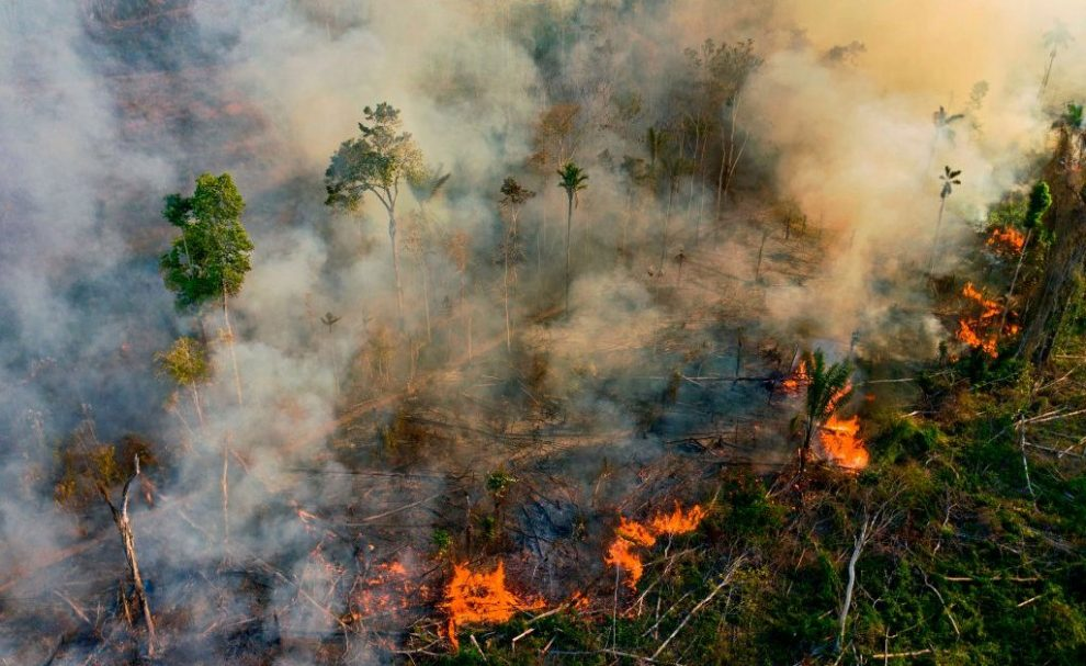 Brazil's Controversial Environment Minister Has Quit. What Does It Mean for the Amazon?